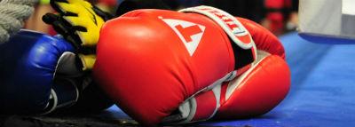 Rock Steady members boxing
